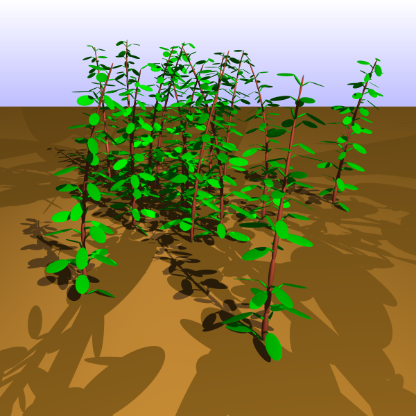 Plants generated by a Python script